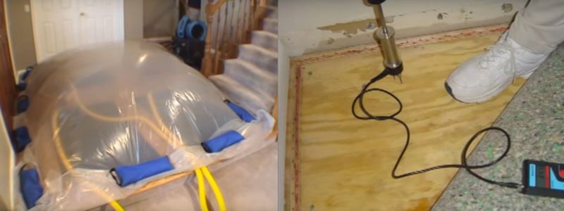 Flood Water Damage Restoration Coolana