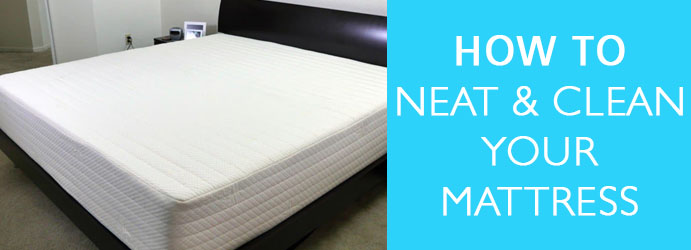 Experts Mattress Cleaning Services Greenvale