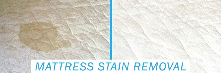 Mattress Stain Removal Services North Booval
