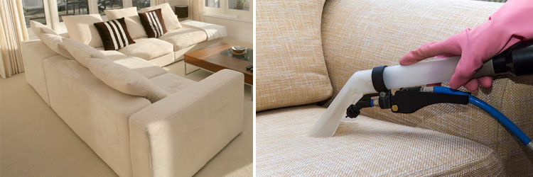 Expert Upholstery Cleaning Services The Head