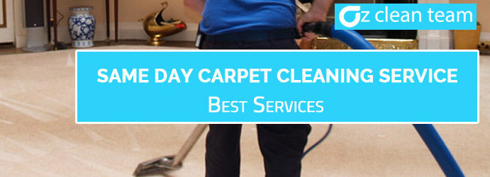 Professional Carpet Cleaner Forestdale