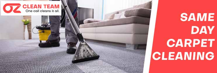 Same Day Carpet Cleaning Mount Pleasant
