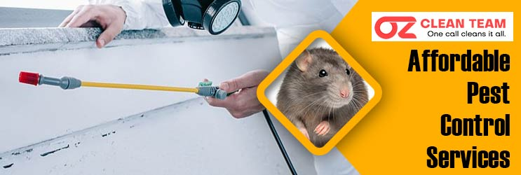 Affordable Pest Control Perth