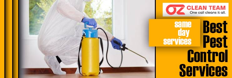 Best Pest Control Service Launceston