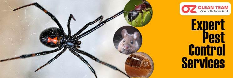 Expert Pest Control Canberra