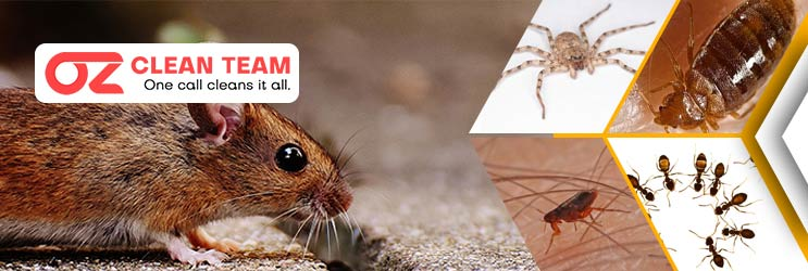 Expert Pest Control Melbourne