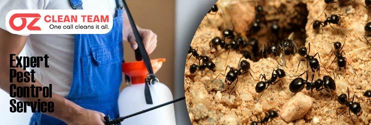 Expert Pest Control Yalbraith