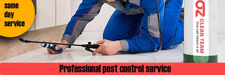 Professional Pest Control Adelaide