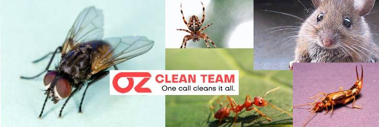 Professional Pest Control Launceston