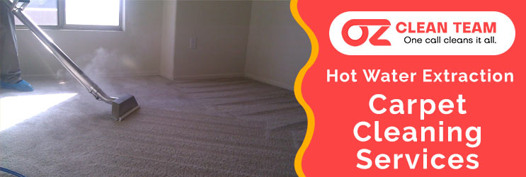 Hot Water Carpet Cleaning Services