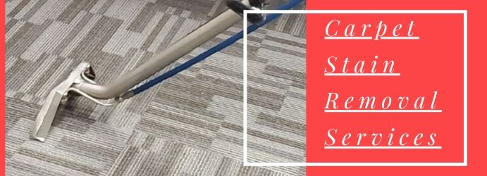 Carpet Cleaning Stain Removal Services
