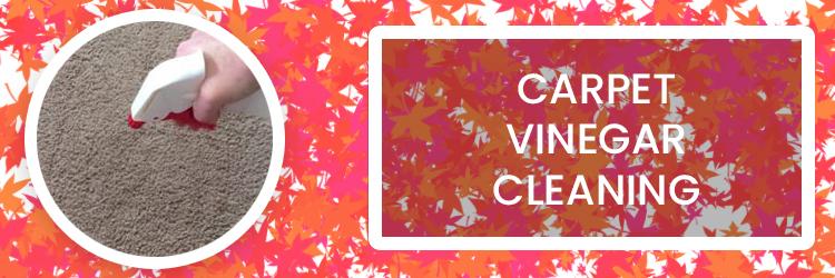 Carpet Vinegar Cleaning