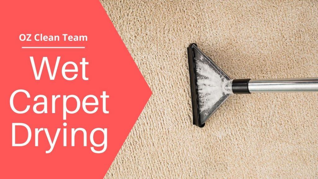 Wet Carpet Drying