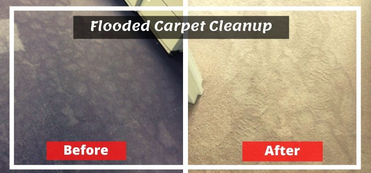 Flooded Carpet Cleanup