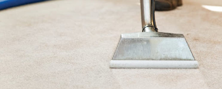 Professional Carpet Cleaning Service Parramatta