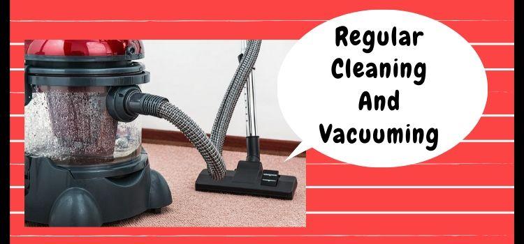 Regular Carpet Cleaning And Vacuuming