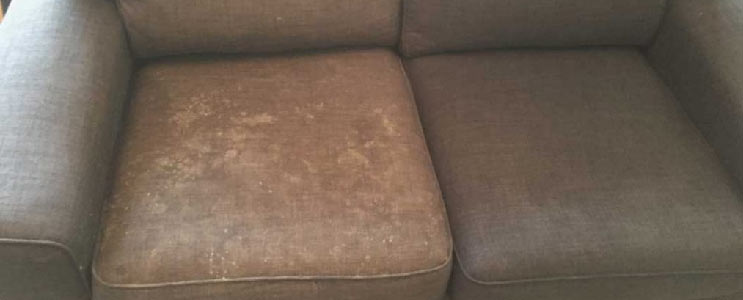Reliable Upholstery Cleaning Caboolture