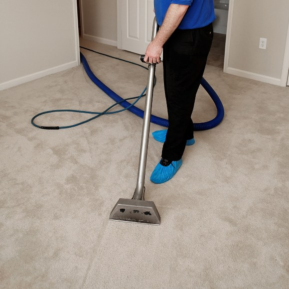 local carpet cleaners Ipswich